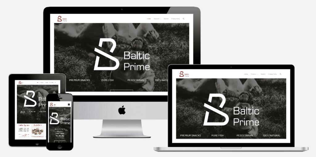 Website erstellen lassen Referenz balticprime.com 1